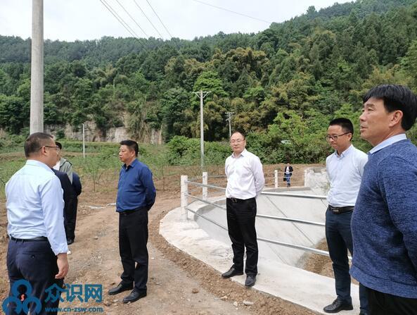 四川阆中市市长杨德宇深入玉台调研产业发展、农村电网改造